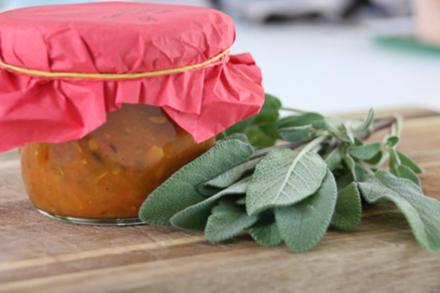 Tomaten Gemüse Sugo - Rezept - Bild Nr. 3530