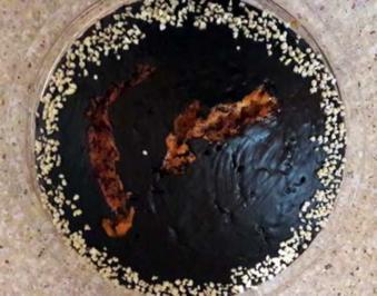 Cognac Torte - Rezept - Bild Nr. 2