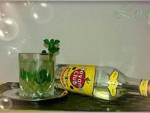 Der Mojito - Rezept - Bild Nr. 2