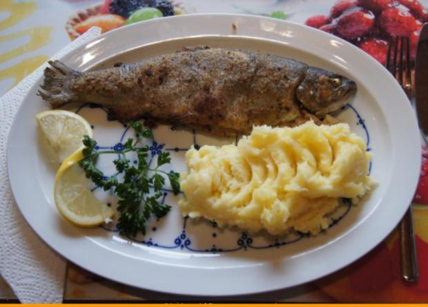 Regenbogen-Forelle mit Kartoffel-Meerrettich-Stampf - Rezept - Bild Nr. 3644