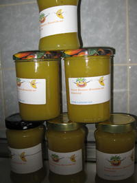 Ananas-Bananen-Marmelade mit Kokosmilch - Rezept - Bild Nr. 3770