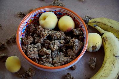 Frühstück - Bananen-Aprikosen-Granola - Knuspermüsli - Rezept - Bild Nr. 3939