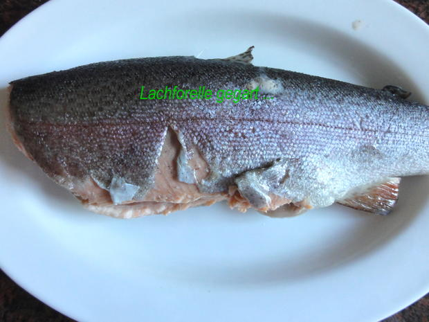 Fisch:   LACHSFORELLE  gedünstet - Rezept - Bild Nr. 3916