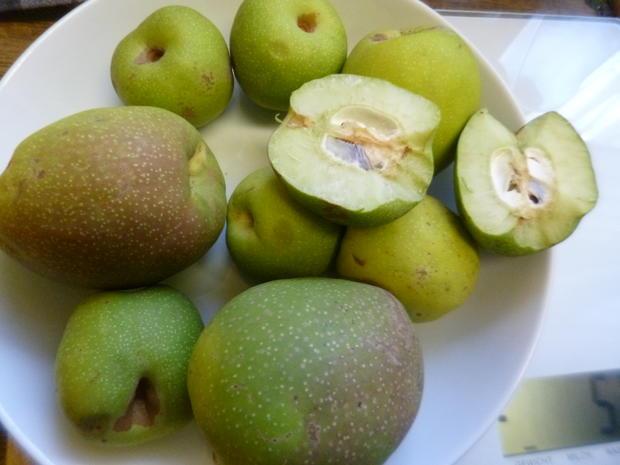Quittenmus mit Apfel und Mandarine - Rezept - Bild Nr. 3913