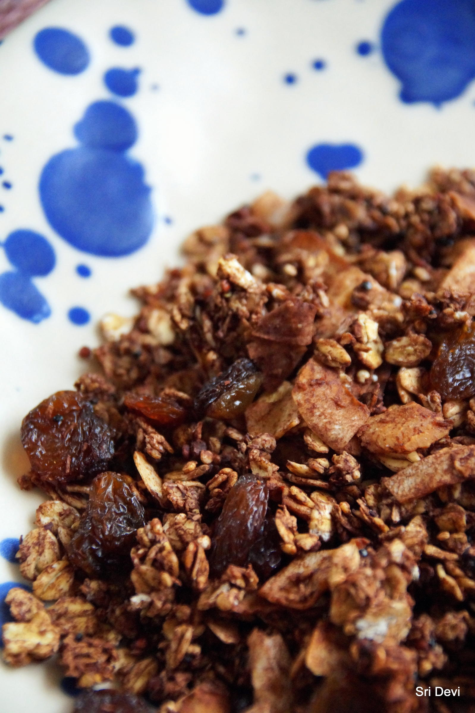 Frühstück: Kokos-Schoko-Granola - Rezept Gesendet von Sri_Devi