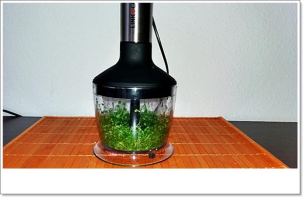 Koriander-Pesto nach Art des Hauses - Rezept - Bild Nr. 4483