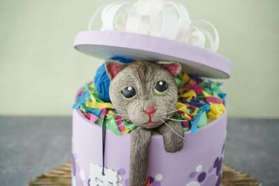 Sally backt: Katze in der Geschenkbox - Rezept - Bild Nr. 2