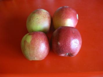 Spanischer Apfelkuchen - Rezept - Bild Nr. 5529