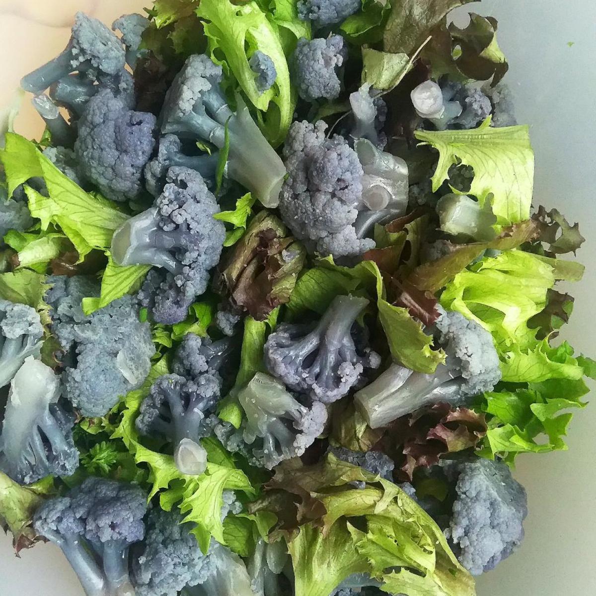 violetter blumenkohl salat rezept mit bild. Black Bedroom Furniture Sets. Home Design Ideas