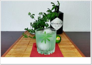 Gin-Waldmeister  ➯ Cocktail - Rezept - Bild Nr. 5664