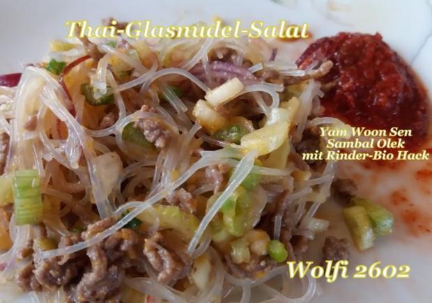 Salat Thai-Glasnudel-Salat mit Rinder-Hackfleisch - Rezept - Bild Nr. 5732