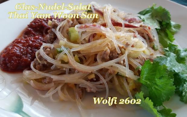 Salat Thai-Glasnudel-Salat mit Rinder-Hackfleisch - Rezept - Bild Nr. 5733