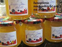 """Ingwer-Marmelade """"Ginger Jam"""" - Rezept - Bild Nr. 5964"""