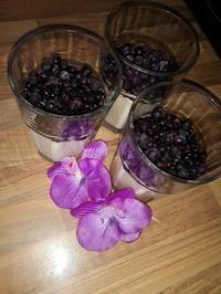 Vanillepudding mit Frischkäse - Rezept - Bild Nr. 5958