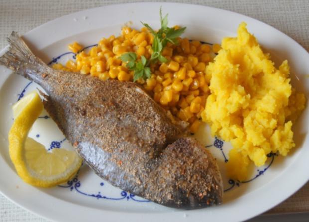 Dorade mit Buttermais und gelben Kartoffelstampf - Rezept - Bild Nr. 6066