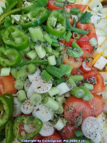 Pizza Brotteig deftig gefüllt mit Gemüse dazu FETA Stick`s - Rezept - Bild Nr. 6088
