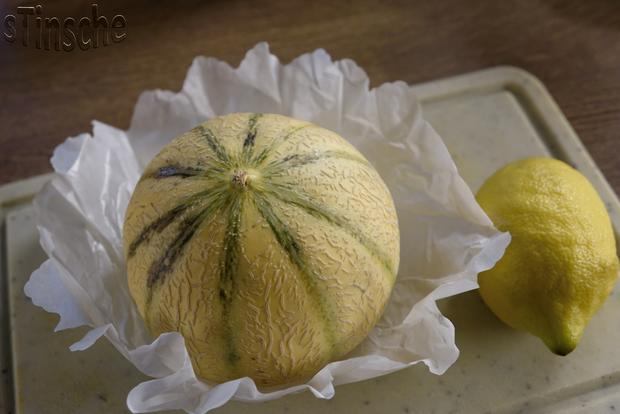 Marinierte Melone an Joghurt-Sahne-Eis - HERRLICH- - Rezept - Bild Nr. 6104