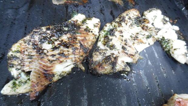 Fisch vom Grill mit Kartoffel-Gurkensalat - Rezept - Bild Nr. 6097