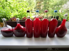 Kirschpflaumensaft mit Brombeeren - Rezept - Bild Nr. 6163