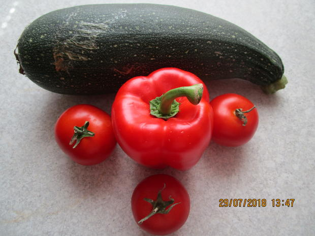 Hack-Zucchini-Topf - Rezept - Bild Nr. 6192