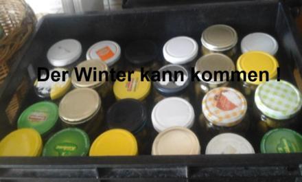 Eingelegte kleine Gewürzgurken nach Ivanka - Rezept - Bild Nr. 6233