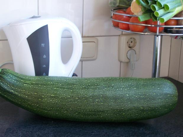 Ein Traum von einer Zucchini gefüllt - No. 2 - Rezept - Bild Nr. 6270