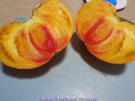 Tomatensalat vom Ochsenherz XXL - Rezept - Bild Nr. 6376