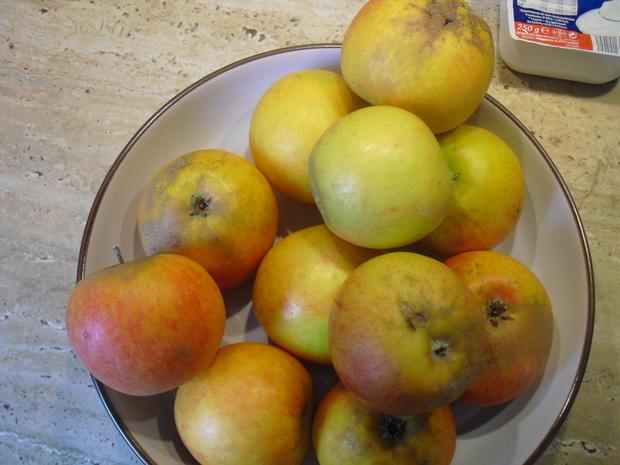 Apfel-Quark- Kuchen - Rezept - Bild Nr. 6612