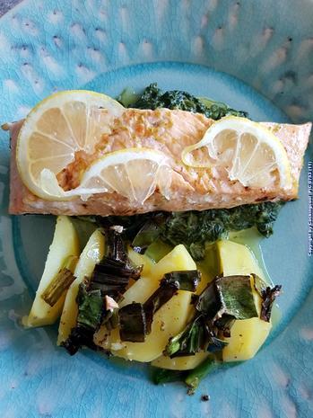 Biggi`s Fisch = Lachs an Käse-Creme-Spinat und Salzkartoffel - Rezept - Bild Nr. 7025