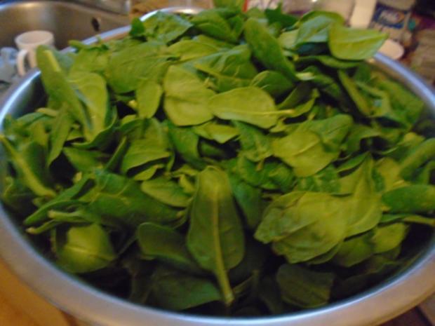 Baby-Spinat mit Spiegelei und Kartoffeln - Rezept - Bild Nr. 4