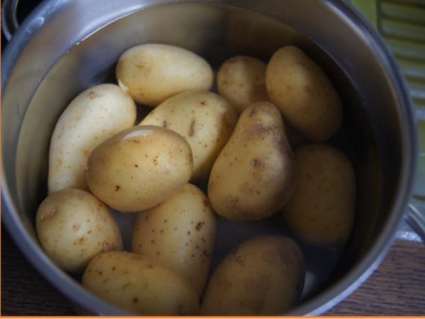 Bratheringsfilet mit Bratkartoffeln und Rote-Bete-Apfel-Salat - Rezept - Bild Nr. 7789