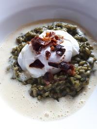 Spinat-Risotto mit pochiertem Ei, Kartoffelschaum und Bacon-Crunch - Rezept - Bild Nr. 7853