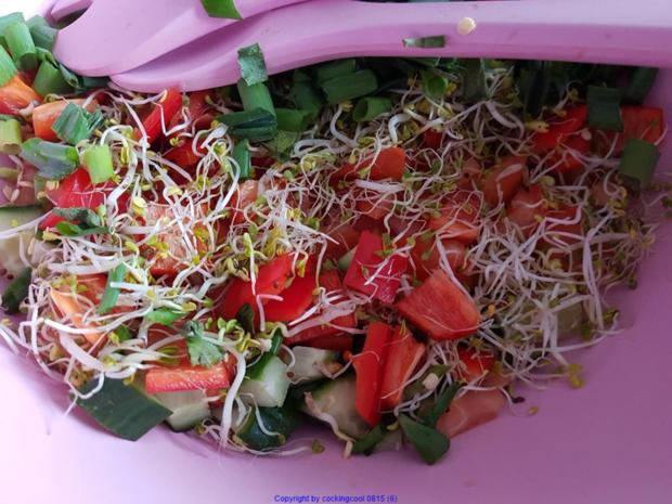 Frischer Salat mit Scampi`s (lauwarm) - Rezept - Bild Nr. 7862