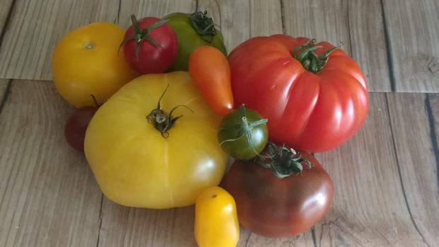 Gemüseleder aus bunten Tomaten (Reste) - Rezept - Bild Nr. 7856