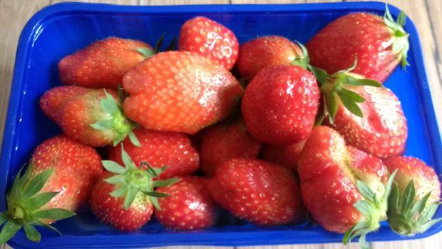 Erdbeer - Shrub mit Erdbeerminze - Rezept - Bild Nr. 8140