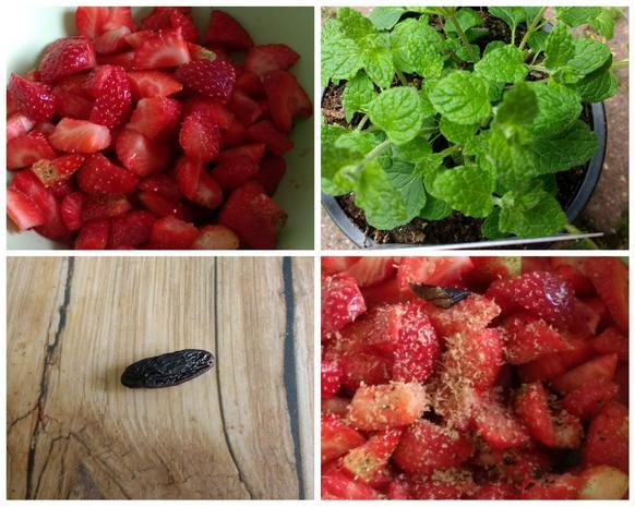 Erdbeer - Shrub mit Erdbeerminze - Rezept - Bild Nr. 8141
