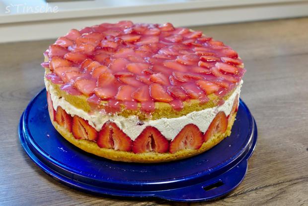 Erdbeer-Sahne-Schmand-Torte - Rezept - Bild Nr. 8185