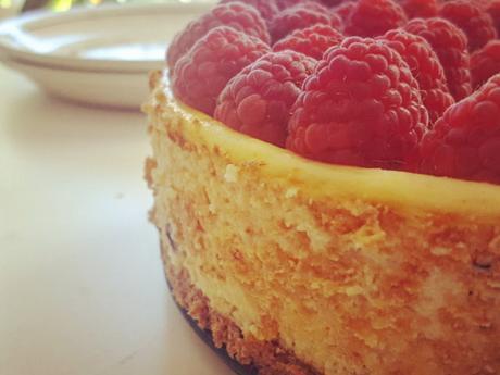 Cremig-fruchtiger NY Cheesecake - Rezept - Bild Nr. 8203