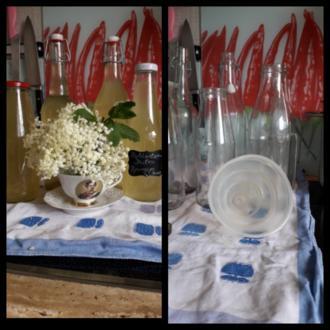 Holunderblüten  Sirup - Rezept - Bild Nr. 8225