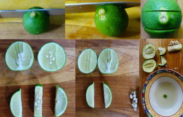 Papaya Lassi - Rezept - Bild Nr. 8249