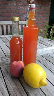 Mein Eistee - Pfirsich mit Zitrone - Rezept - Bild Nr. 8384