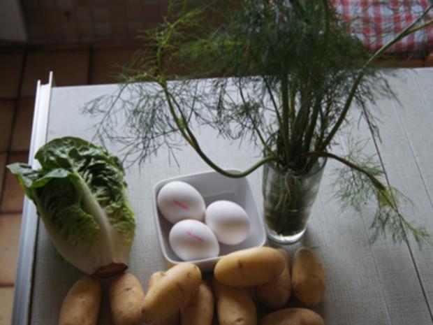 Gekochte Eier mit Dillsauce, Kartoffeln und Romana-Salat - Rezept - Bild Nr. 8472