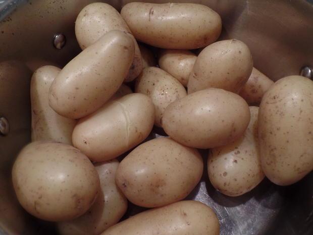 Zander auf Kartoffel-Pilz -Salat - Rezept - Bild Nr. 8572