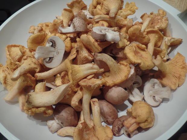 Zander auf Kartoffel-Pilz -Salat - Rezept - Bild Nr. 8574