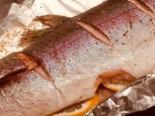 Saftige Lachsforelle aus dem Ofen - einfach, schnell und sehr fein - Rezept - Bild Nr. 8639