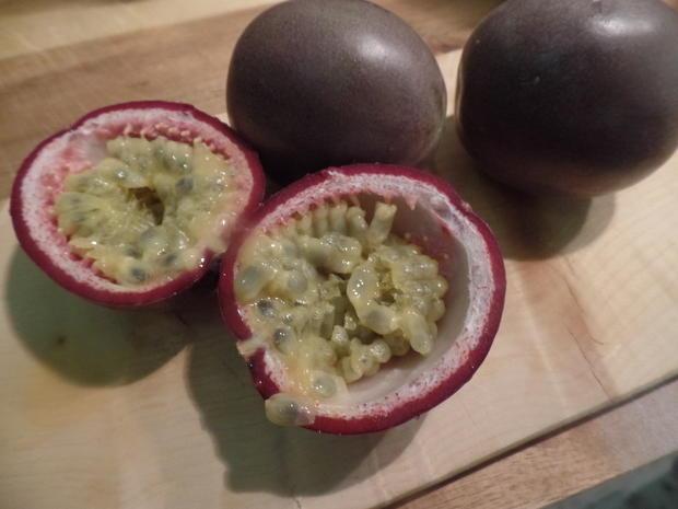 Kokos-Cotta mit Passionsfrucht - Rezept - Bild Nr. 8710