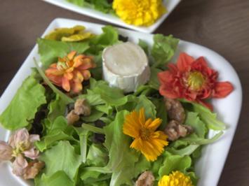 Warmer Ziegenkäse auf Salatbett - Rezept - Bild Nr. 8773