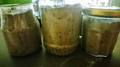 Leberwurst im Glas - Rezept - Bild Nr. 8869