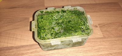 Bärlauch-Würzpaste - Rezept - Bild Nr. 2