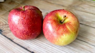 Weizen - Sauerteig aus Äpfeln - Rezept - Bild Nr. 3